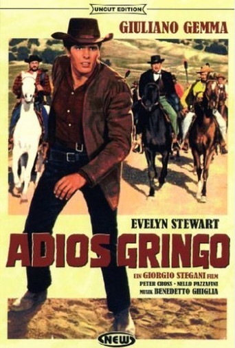 "Poster for the movie ""Adios gringo"""
